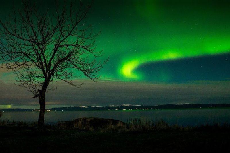 Vikhammer Camping Noorderlicht